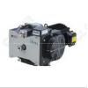 DVSL-100C,DVSL无油真空泵anest iwata