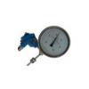 WSSE-401,WSSP-401,WSSXE-401,带热电偶/热电阻双金属温度计