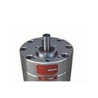 BB-G1,BB-G2.5,BB-G4,BB-G6,BB-G10,BB-G16,BB-G20,BB-G25,BB-G32,BB-G陶瓷不锈钢齿轮泵